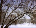 Monopteros im Winter