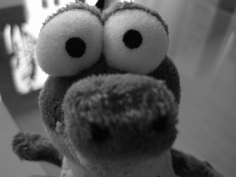 Monster - Schnappi