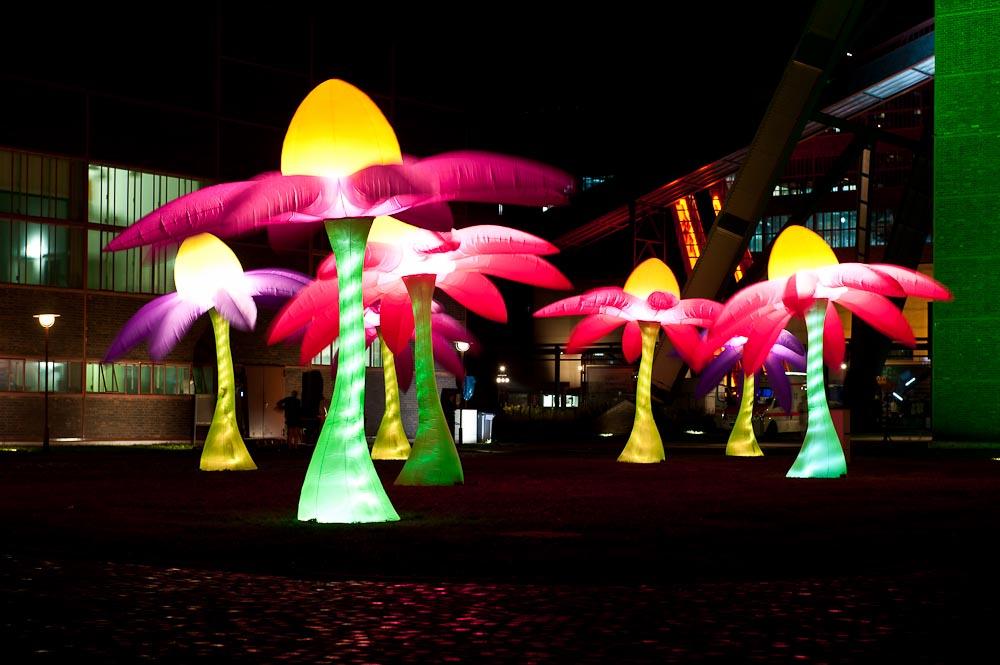 Monsterleuchtblumen im Industriepark