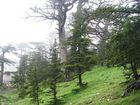 Mont Chelia, mai 2007