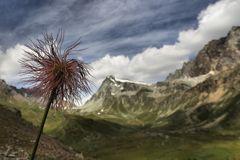 Mont Gelè e dintorni