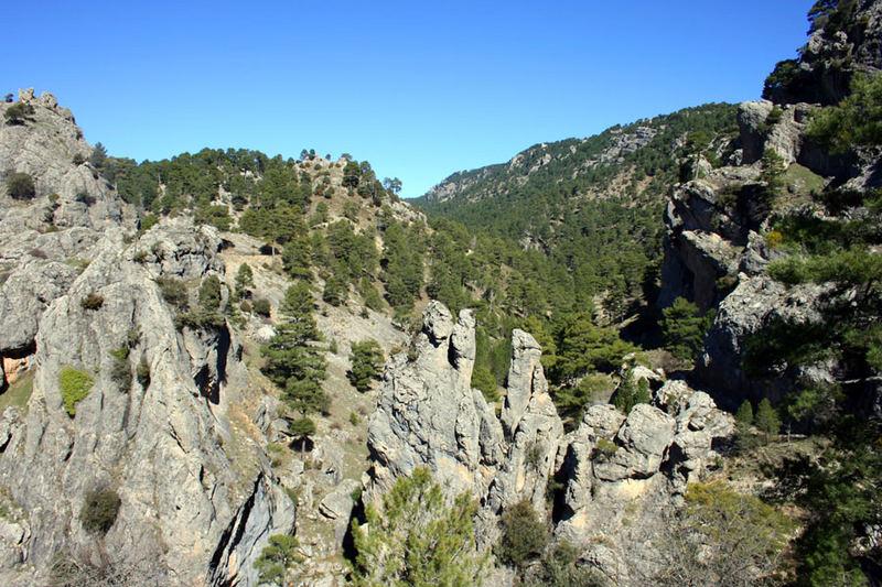 Montañas y tranquilidad