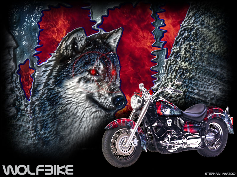 """Montage """"Wolfbike"""""""