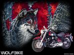 "Montage ""Wolfbike"""