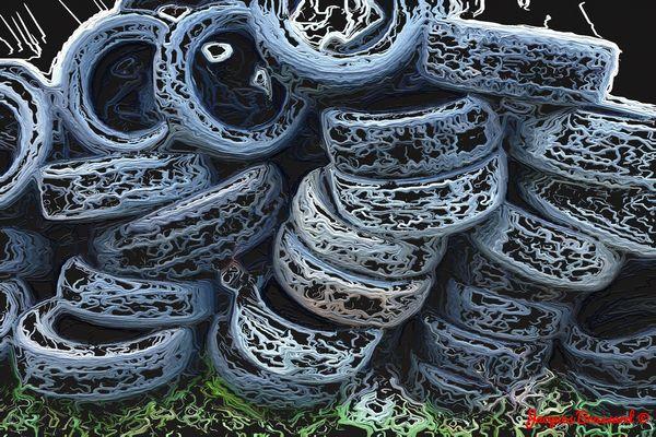 Montagne de vieux pneus