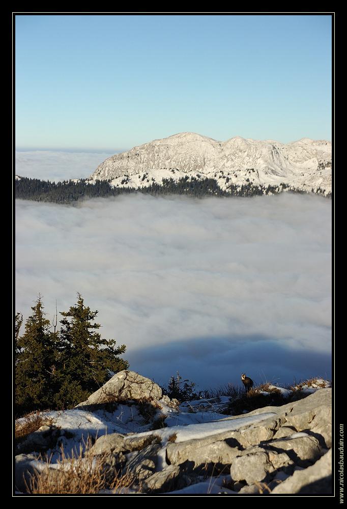 Montagne, Nuages, ciel bleu, chamois - novembre 2007