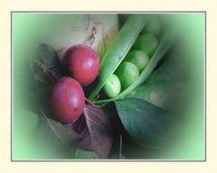 Montags Gemüse