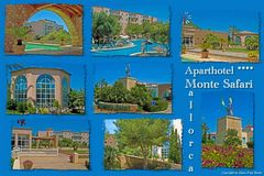 Monte Safari