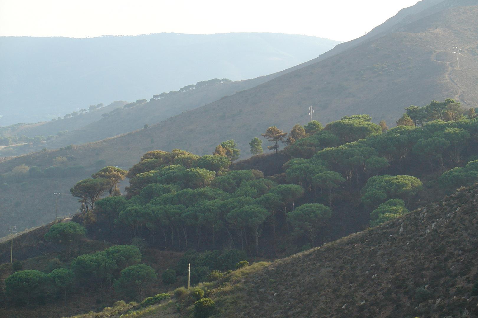 Monte Strega, Elba