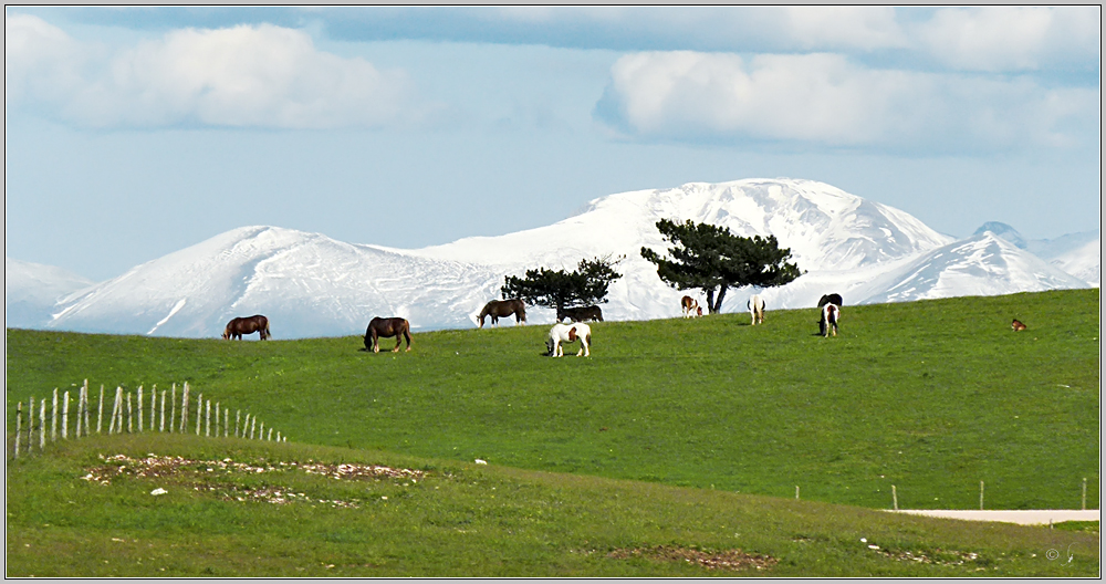 Monte Subasio (1290m)...