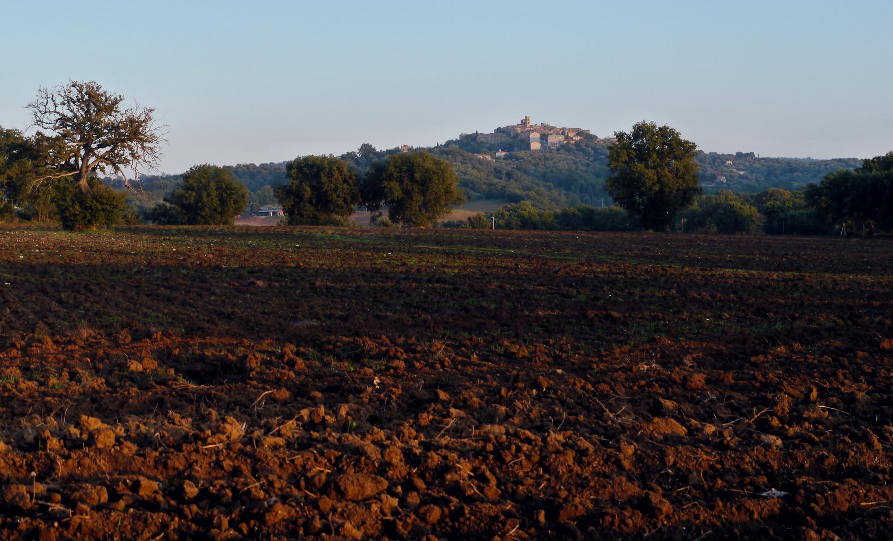 Montemerano - Toscana