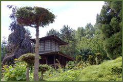Monto-Verde - Japanischer-Garten