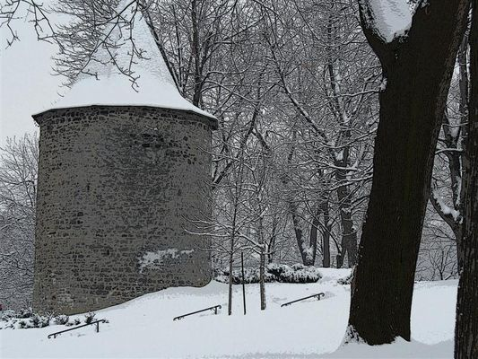 MONTREAL IN WINTER