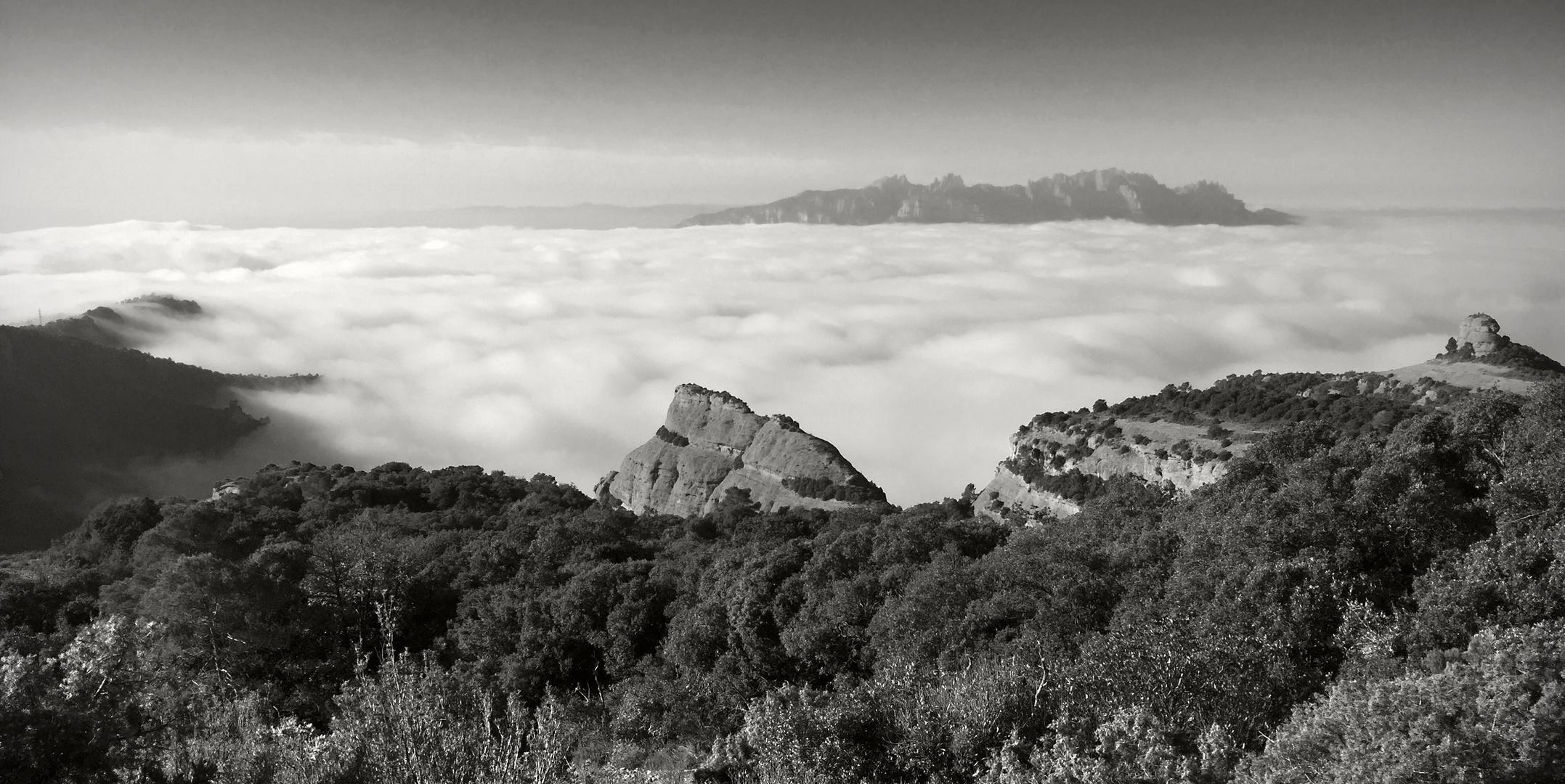 Montserrat sobre algodones