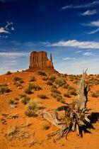 Monument Valley Navajo Tribal Park III - Utah - USA