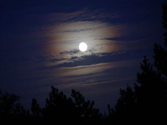 ---moon---