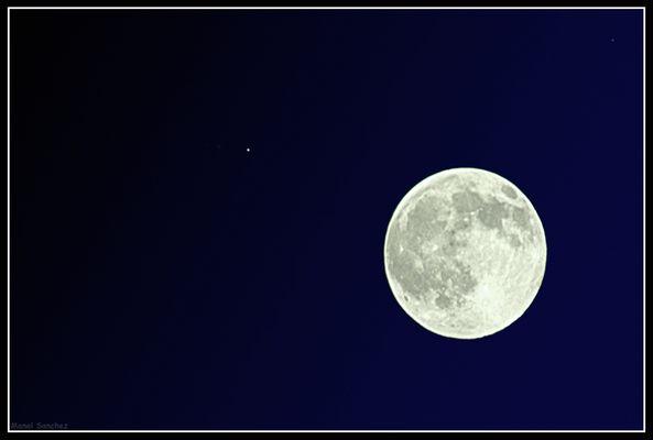 Moon & Co.
