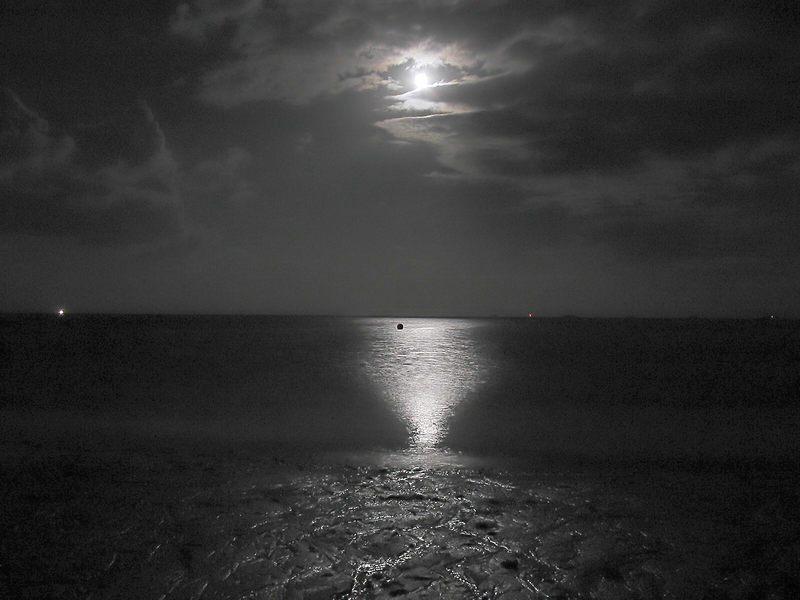 ...moon forever...
