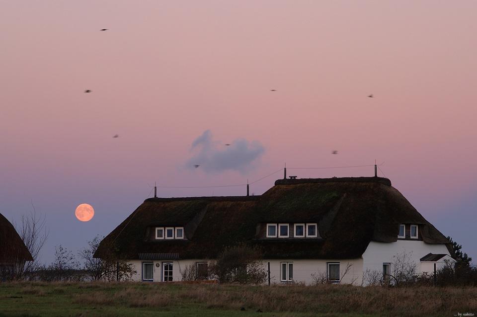 Moon over Amrum