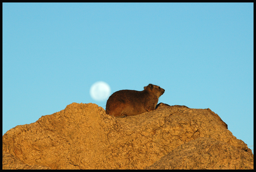 >Moon over ...
