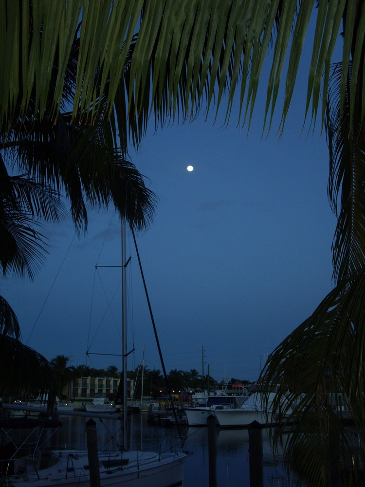 Moon over Key Largo