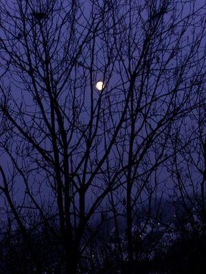 Moon over Rotenburg / Fulda
