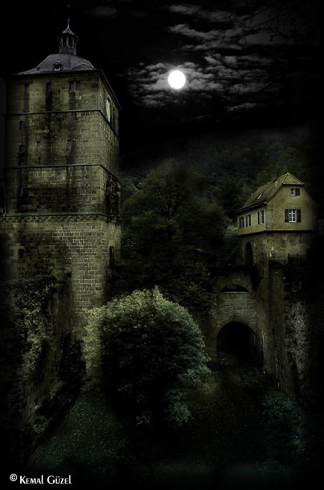 moonlight ...