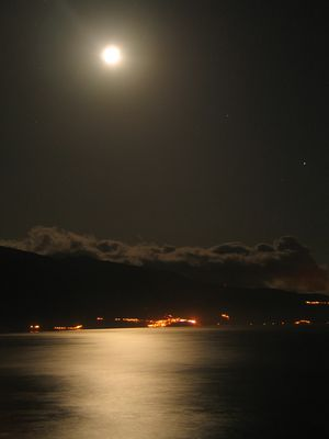 Moonlight Melodie
