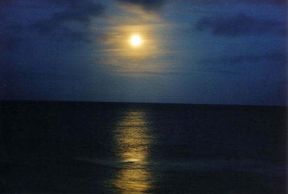 Moonlight over the ...