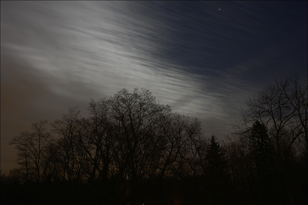 moonlit II