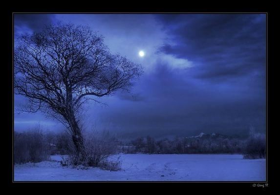 Moonshine Still