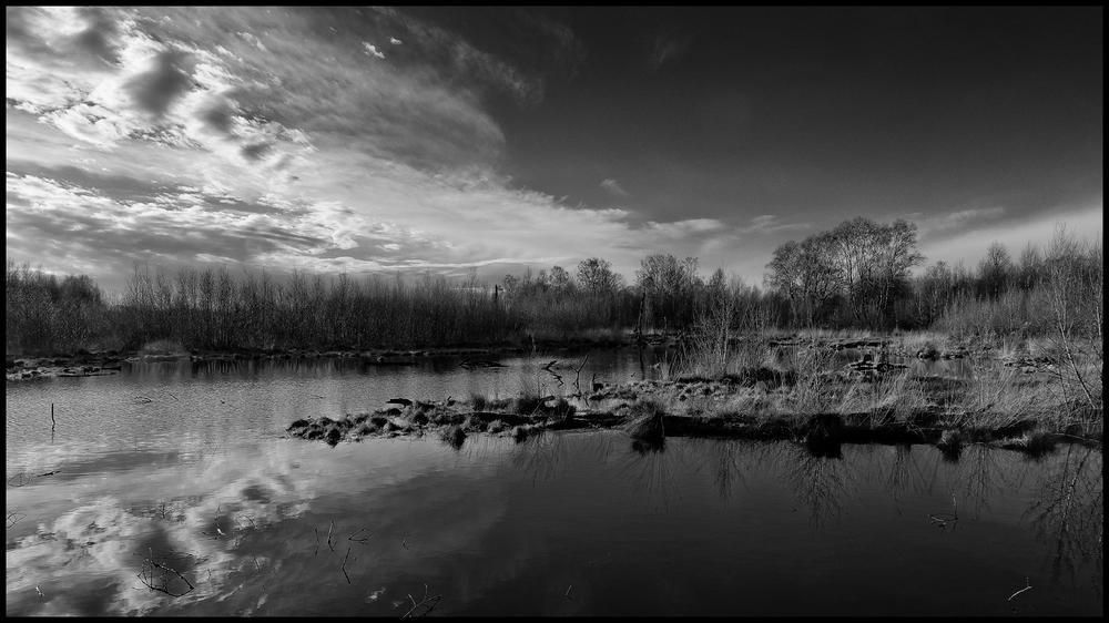 Moor in schwarz-weiß