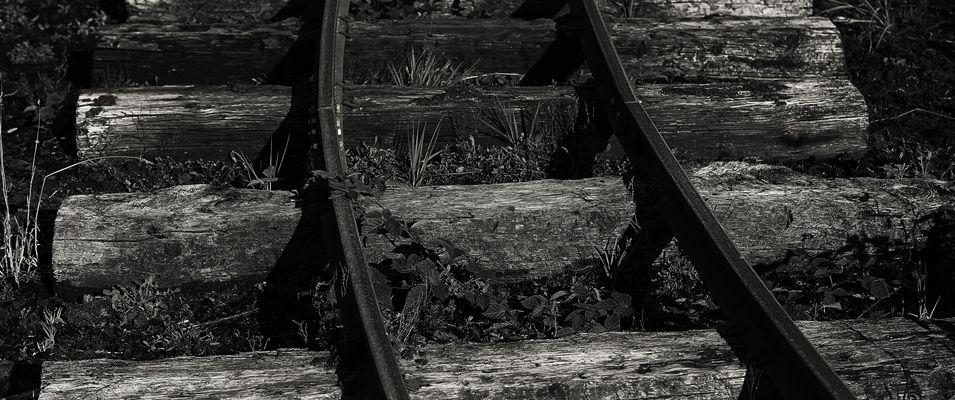 Moorbahn...03