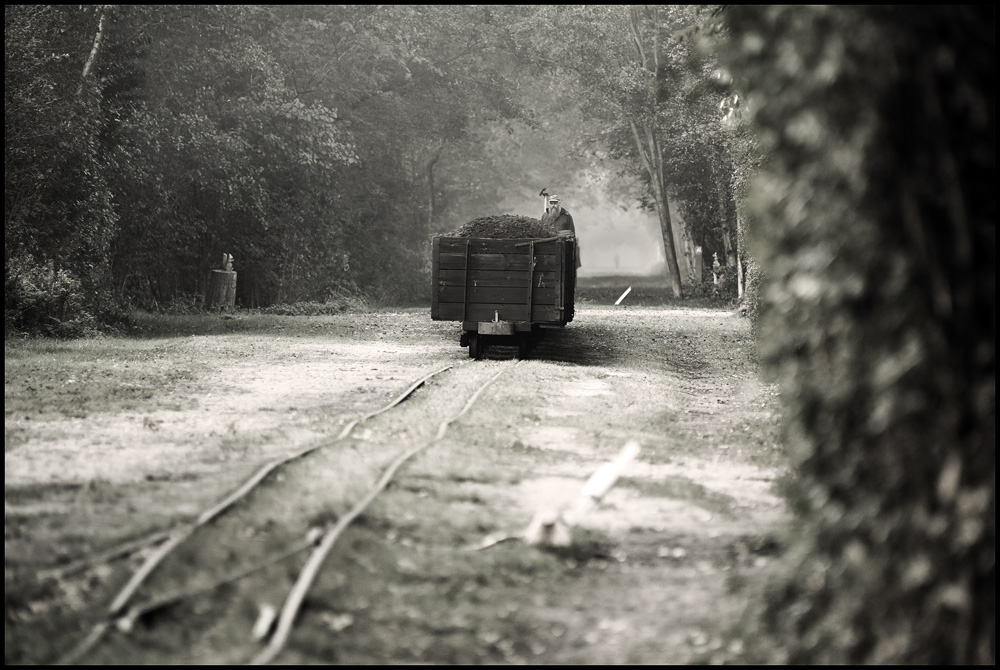 Moorbahnfahrer