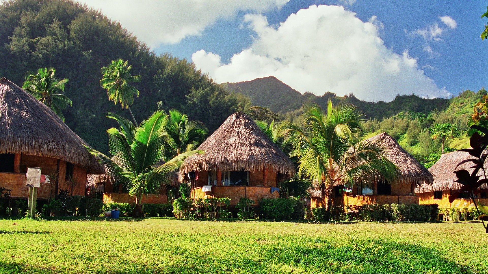 MOOREA STYLE TRENCH POLYNESIA
