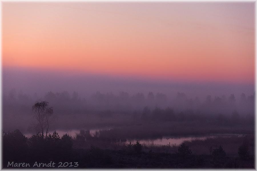 Moormorgen