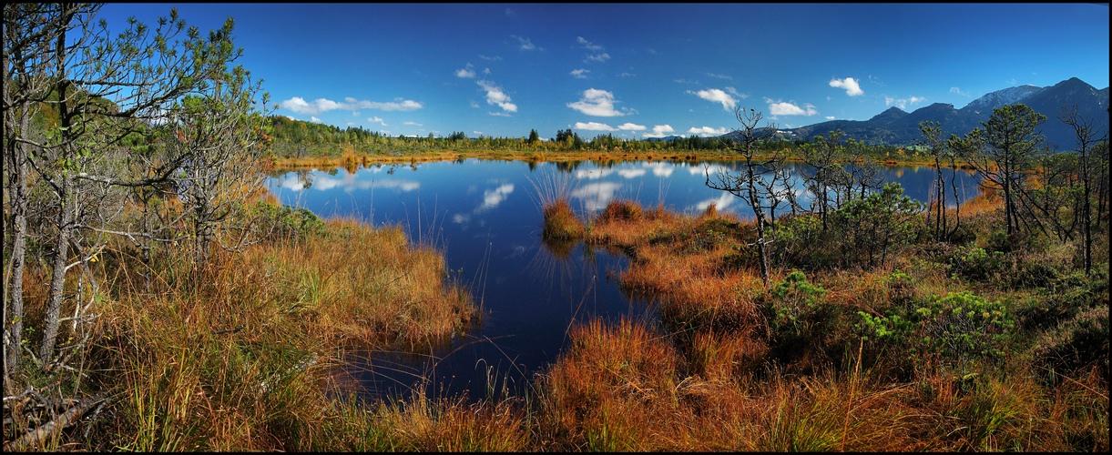 ~ Moorsee ~