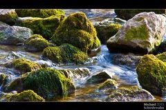 Moosbewachsene Steine