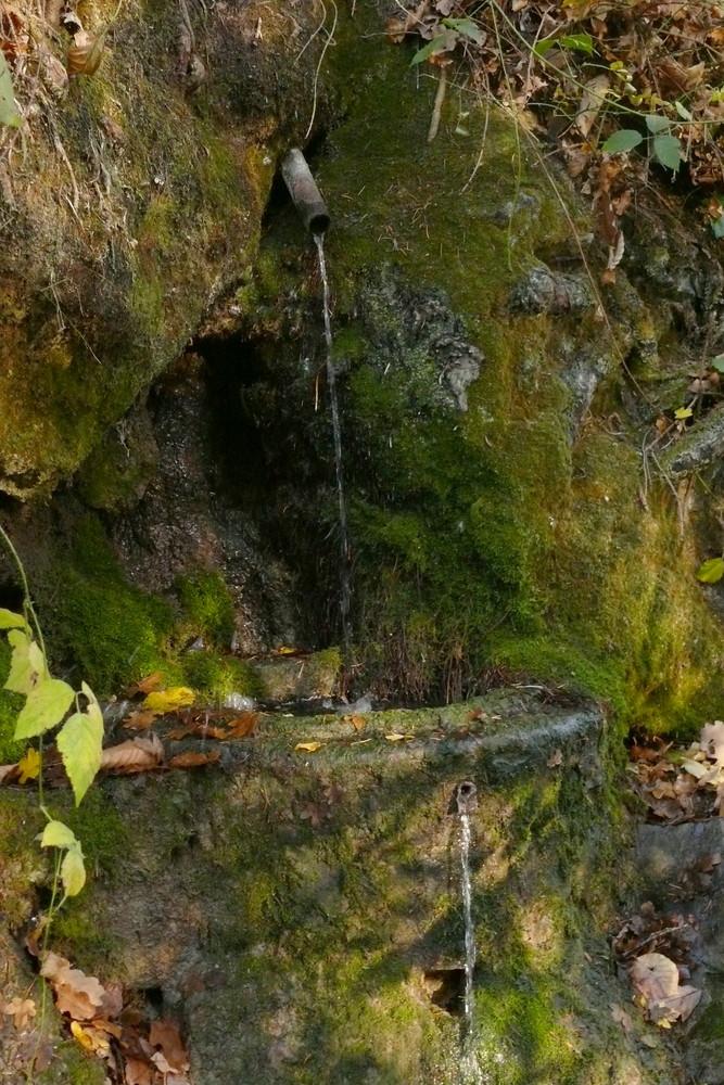 moosbewachsener Brunnen