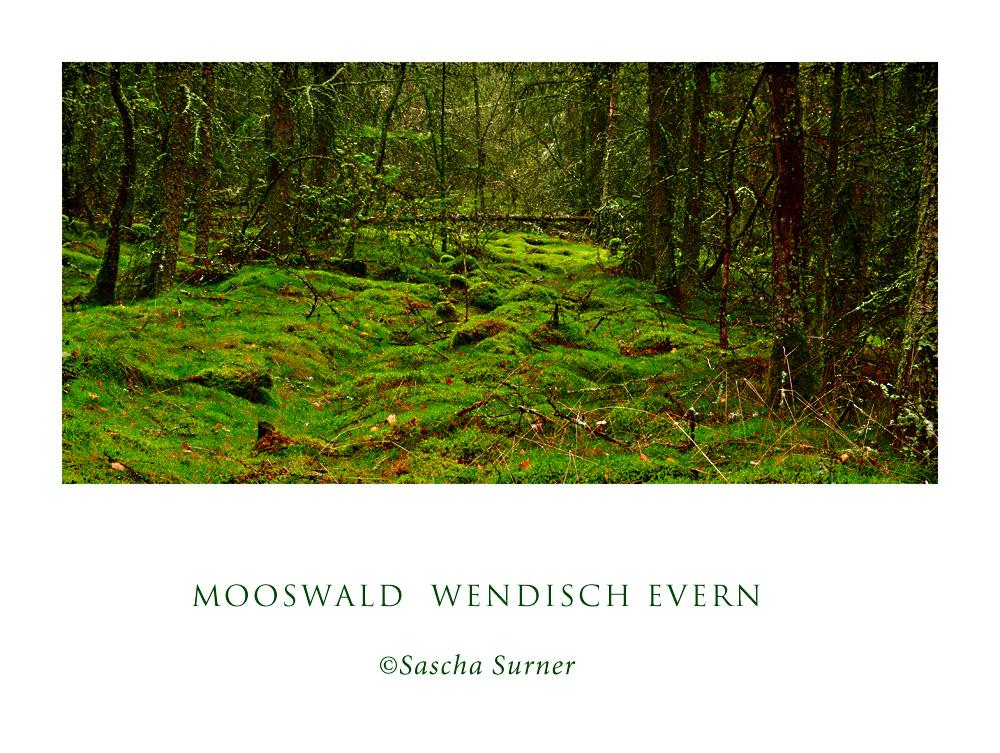 Mooswald