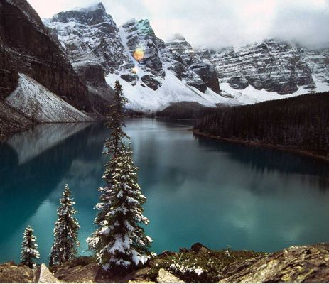 Moraine Lake with trees