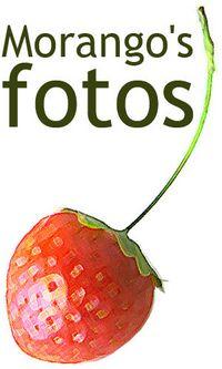 MorangoFotos