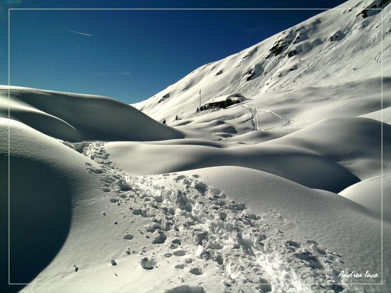 Morbide dune