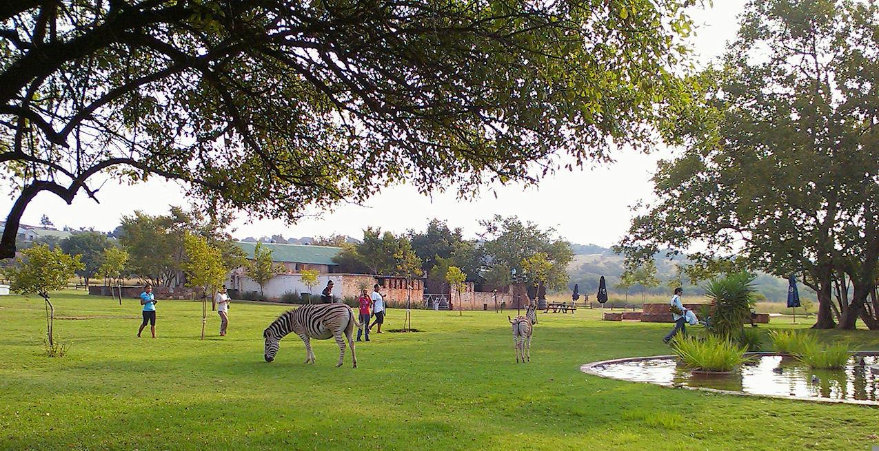 Moreletta Park