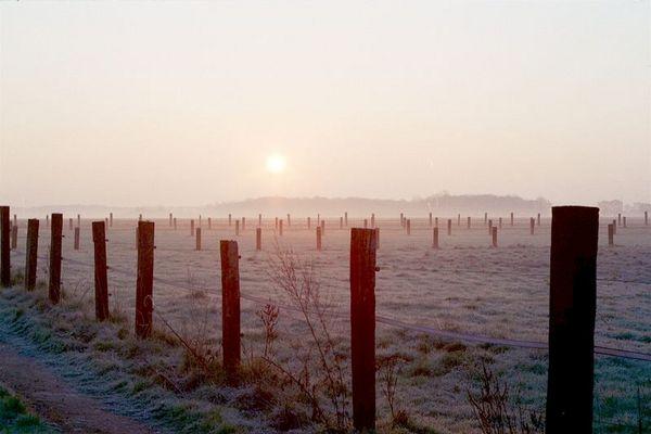 Morgen am Niederrhein