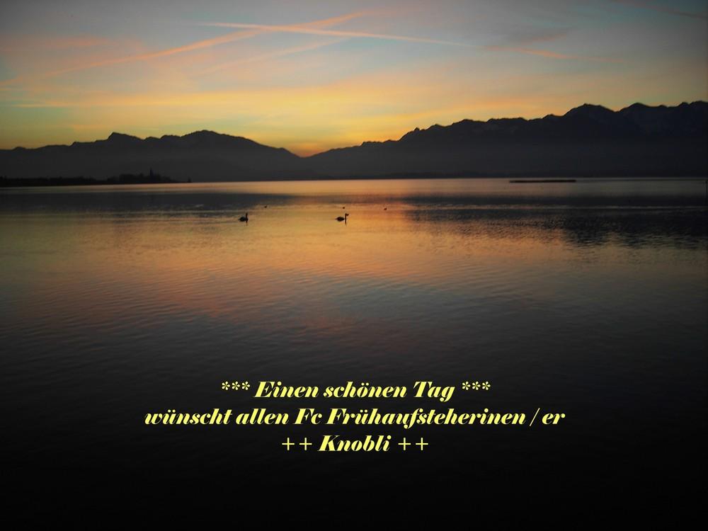 Morgen am Zürichsee