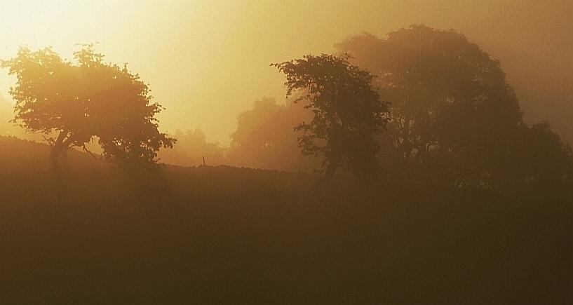 Morgen in den Yorkshire Dales