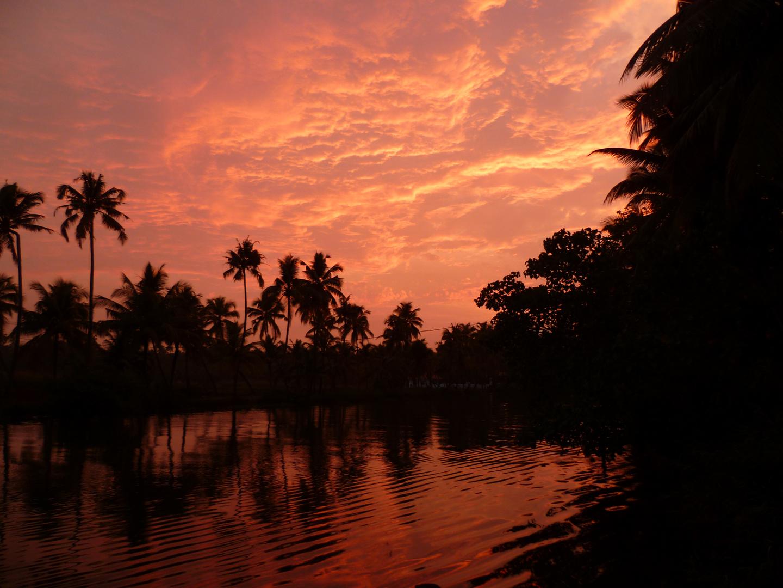 Morgen in kerala (indien)