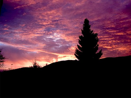 Morgen- oder Abendsonne?