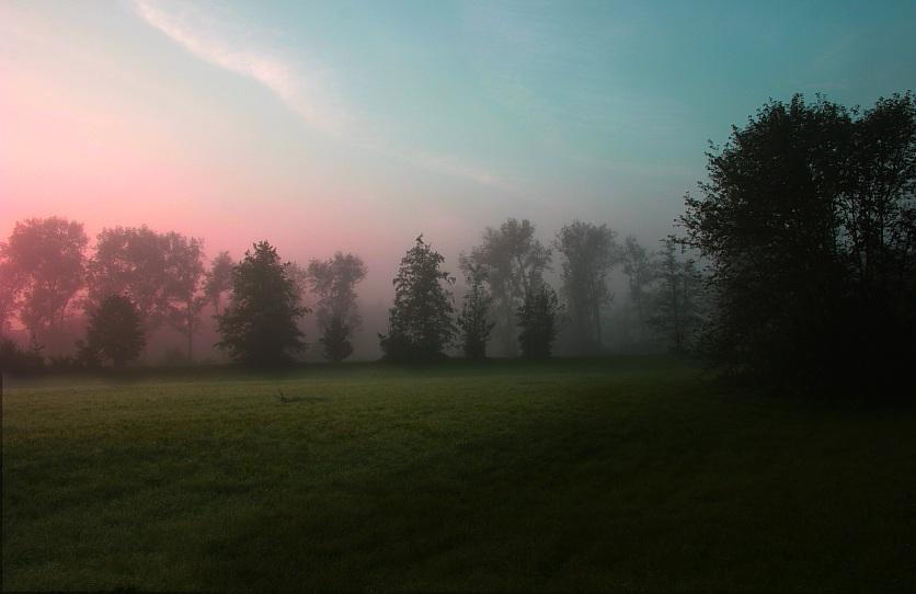 Morgen-Stund'